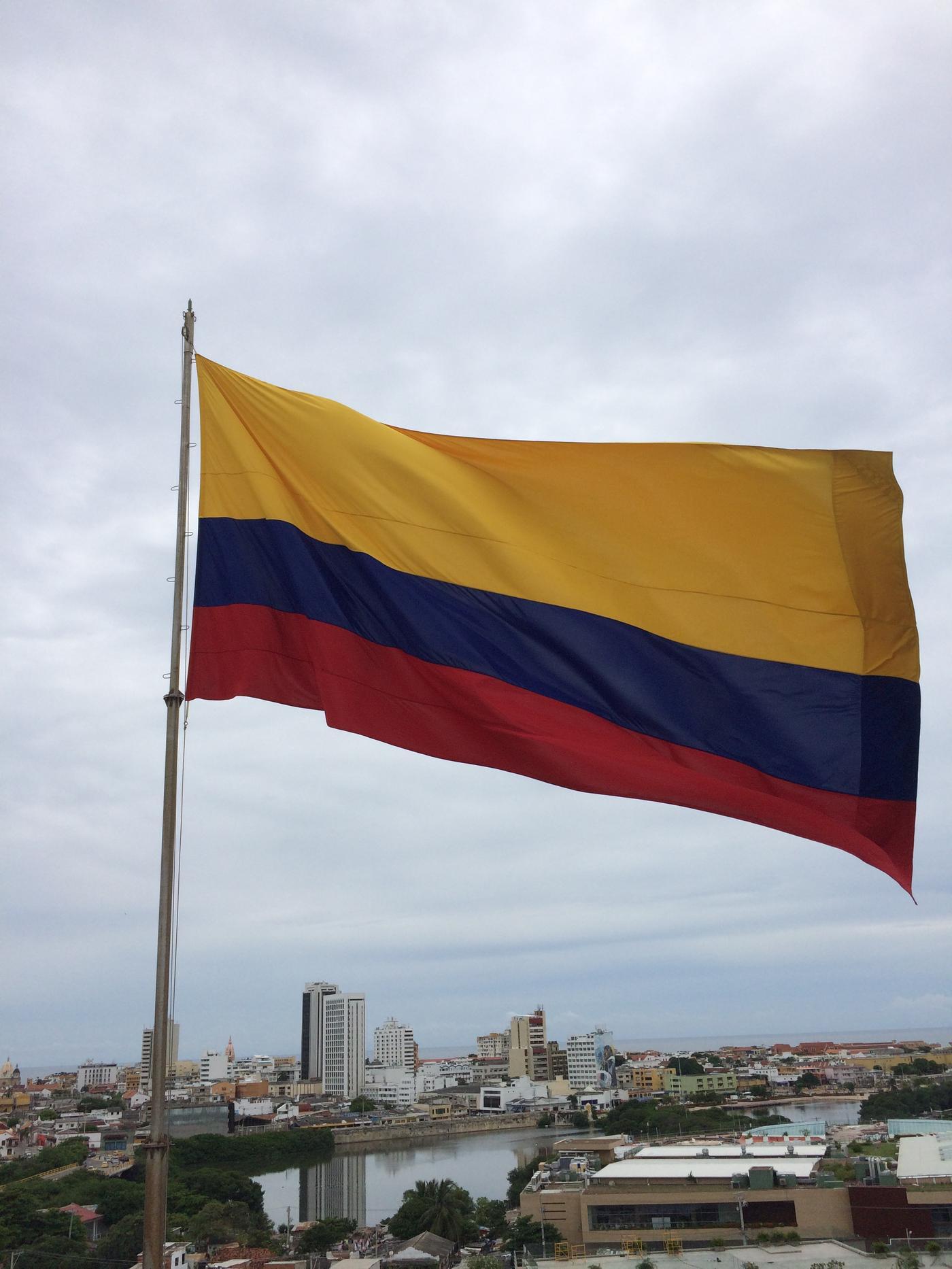 flag_Meddelin.JPG